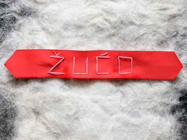beautiful red ribbon with handmade dog name stitching