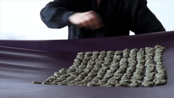 hundred sand objects arranged on purple faux leather