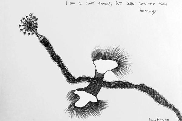 ivana-filip-animal-drawing-TI